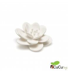Lanco - Flor de loto, mordedor de caucho