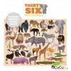 Crocodile Creek - Thirty Six Animales Salvajes, 100 pz