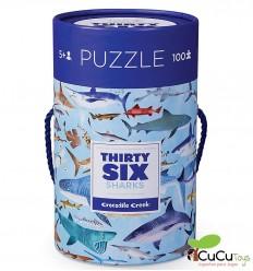 Crocodile Creek - Espacio, Poster + Puzzle 200 piezas