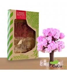 Seedling - Cerezo Mágico, juguete creativo