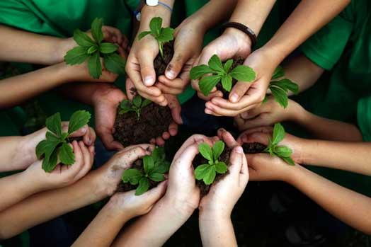 formas-cuidar-medio-ambiente
